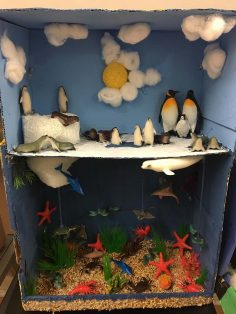 6th Grade Ecosystems Project